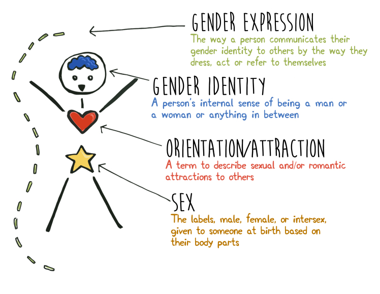 Difference gender sex photos 477